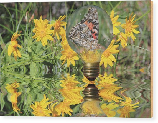 Butterfly In A Bulb II - Landscape Wood Print