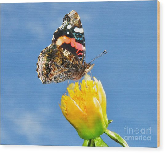 Butterfly N Flower Wood Print