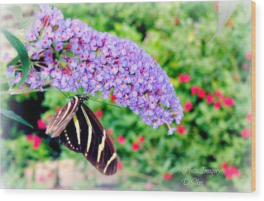 Butterfly Plant Wood Print by Debbie Sikes