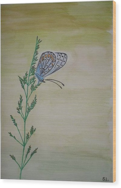 Butterfly Wood Print by Silvia Louro