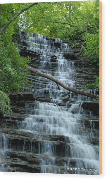 Buttermilk Falls Wood Print by Tina Karle