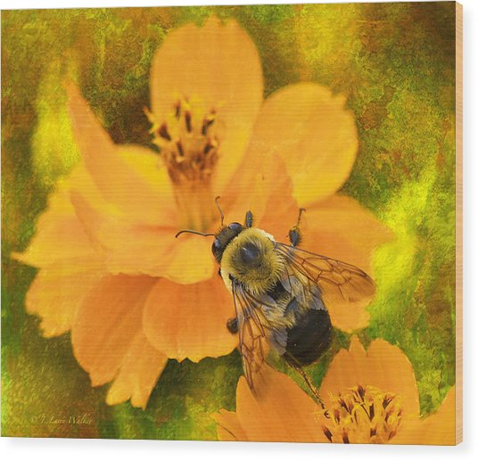 Buzzy The Honey Bee Wood Print