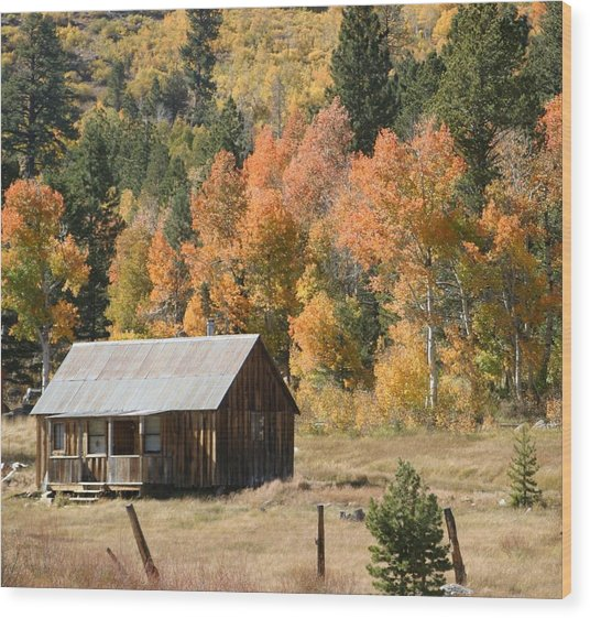 Cabin In Autumn Wood Print