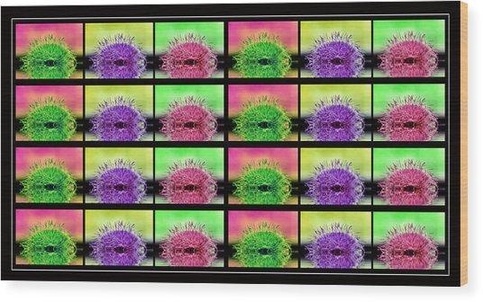 Cactus Dreaming Wood Print by Edie Kynard