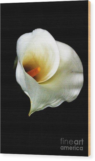 Cala2 Wood Print