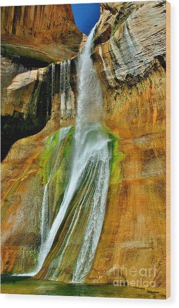 Calf Creek Falls II Wood Print