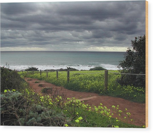 Cambria Trail Wood Print