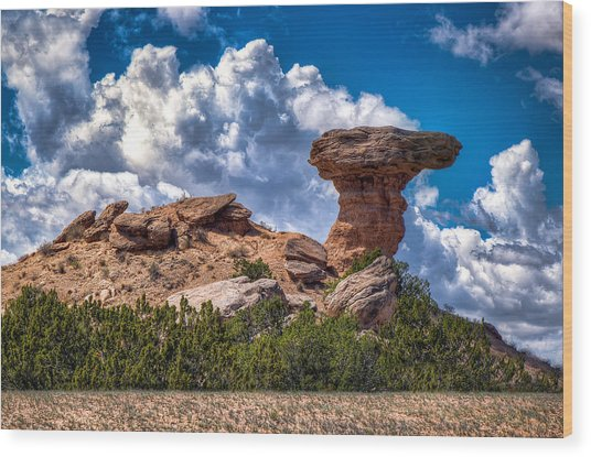 Camel Rock Wood Print