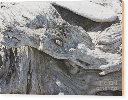 Cammofloge Giraffe Wood Print by Jane Whyte