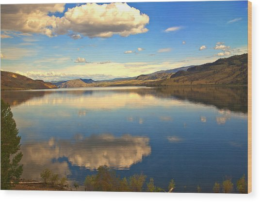 Canadian Lake 1437 Wood Print by Larry Roberson