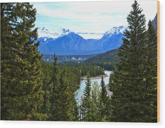 Canadian Lake 1691 Wood Print by Larry Roberson