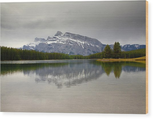 Canadian Lake 1733 Wood Print by Larry Roberson