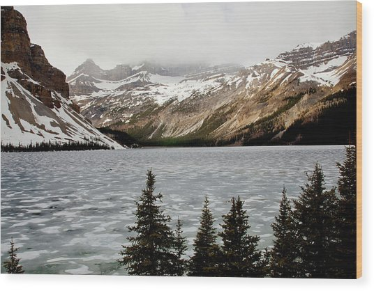 Canadian Lake 1899 Wood Print by Larry Roberson