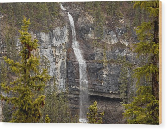 Canadian Water Fall 1908 Wood Print by Larry Roberson