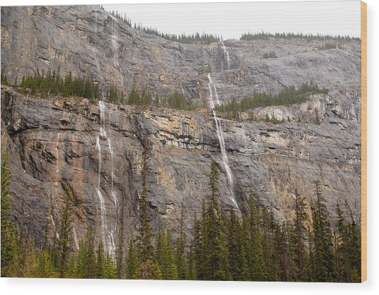 Canadian Water Fall 1924 Wood Print by Larry Roberson