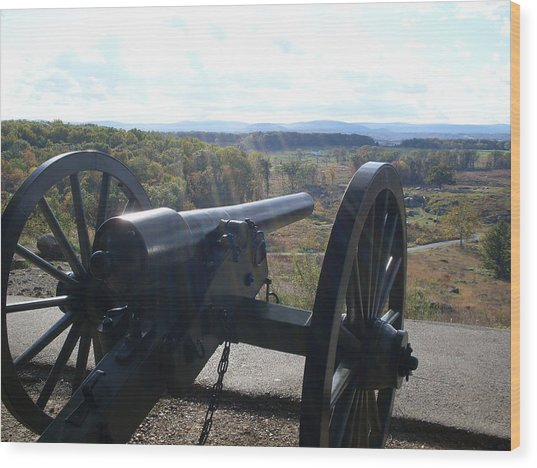 Cannon At Little Roundtop Wood Print