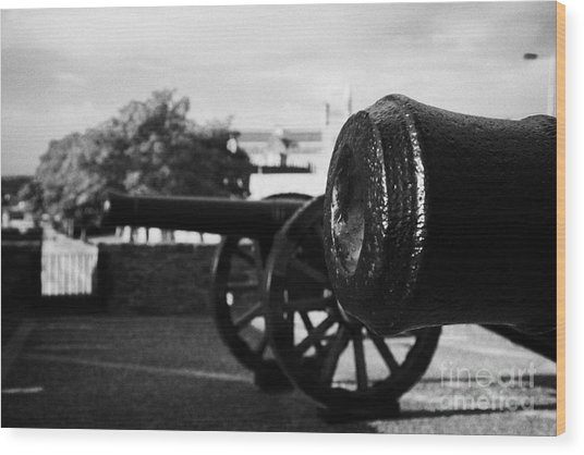 Cannons On The Mall Wall And Double Bastion Section Of Derrys City Walls Wood Print by Joe Fox
