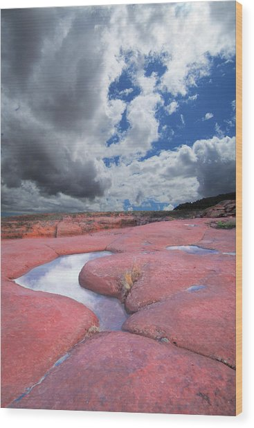 Canyon Pools Wood Print by Ric Soulen