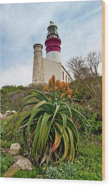 Cape Agulhas  Wood Print