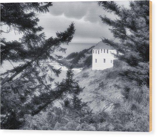 Cape Foulweather Wood Print