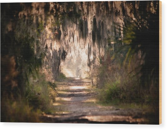 Capture Wood Print
