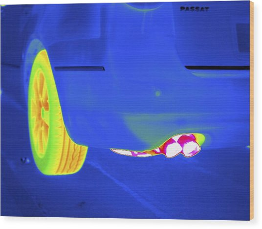Car Exhaust, Thermogram Wood Print