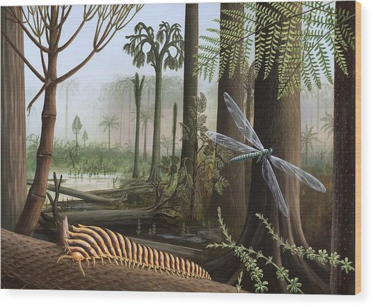 Carboniferous Insects, Artwork Wood Print by Richard Bizley