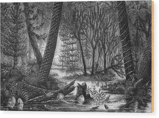 Carboniferous Swamp 19th Century Artwork Photograph By