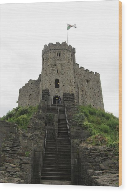 Cardiff Castle Wood Print