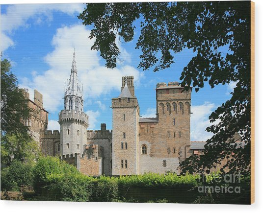 Cardiff Castle Wood Print by Susan Wall