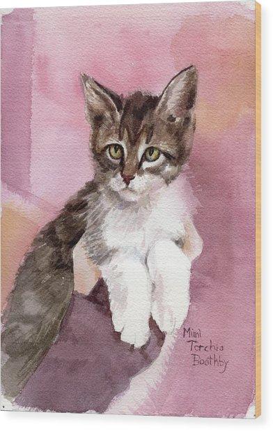 Carlisle - Kitten Wood Print