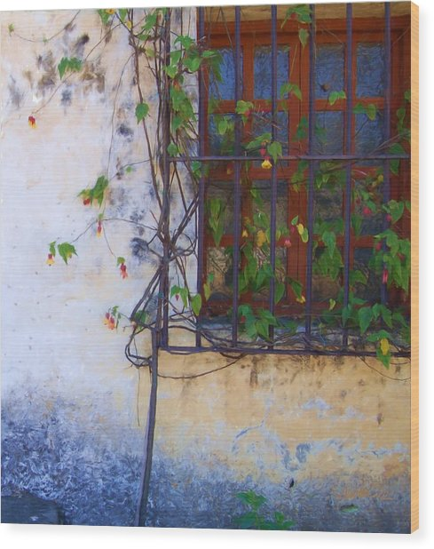 Carmel Mission Window And Flowers Wood Print by Jim Pavelle