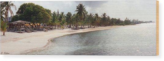 Carribean Shore Wood Print
