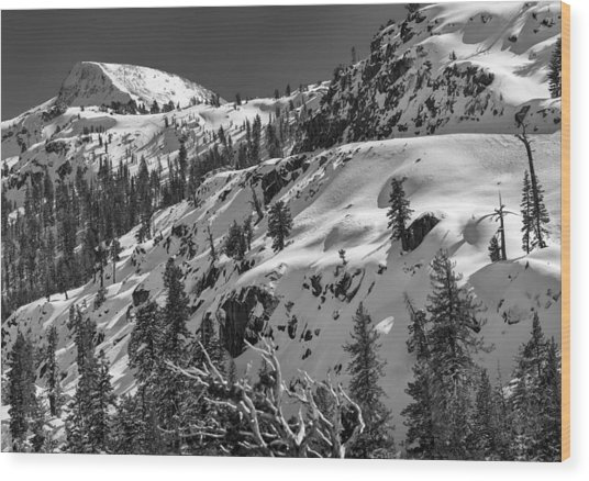 Carson Pass Wood Print by A A