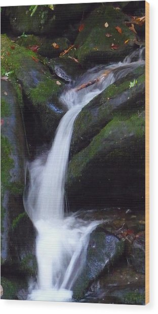 Cascading Angel Hair Wood Print by Michael Carrothers