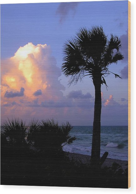 Casperson Beach Sunrise With Palm Wood Print