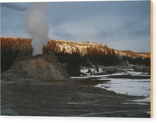 Castle Geyser Yellowstone National Park Wood Print