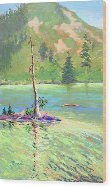 Castle Lake Wood Print