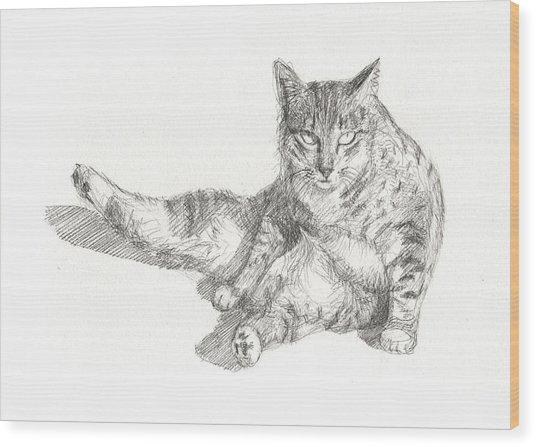 Cat Sitting Wood Print