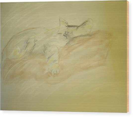 Cat Sketch Wood Print