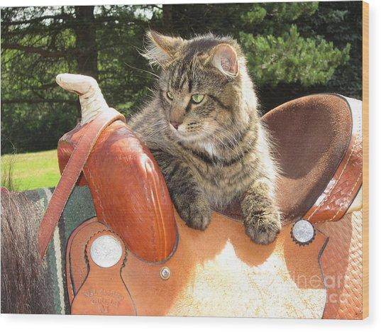 Cats Ride Free Wood Print