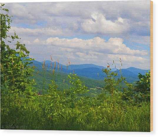 Catskill Mountain Hillside Wood Print