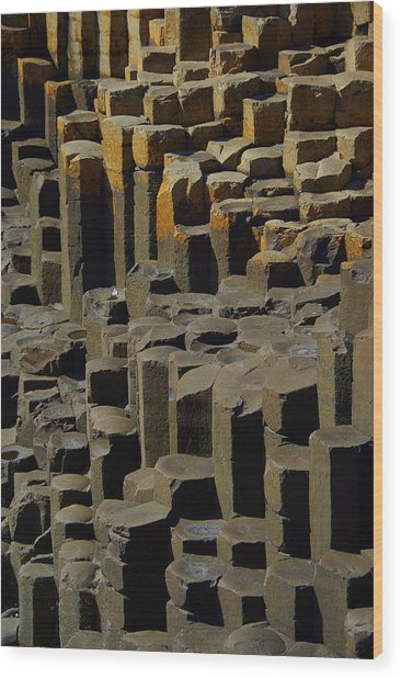 Causeway Stones Wood Print by Cat Shatwell