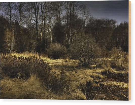Cd'a River Flood Plain Wood Print by Grover Woessner
