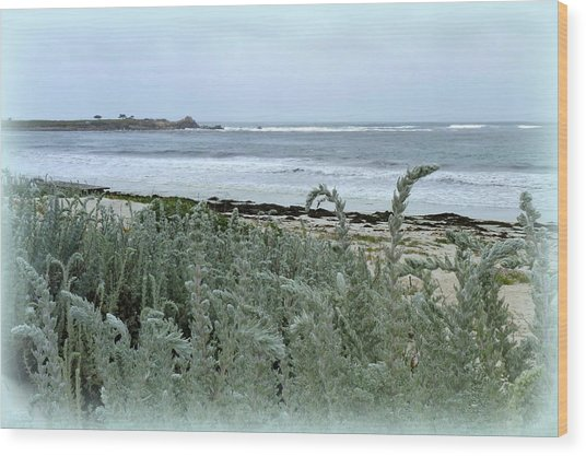 Celadon Seascape Wood Print