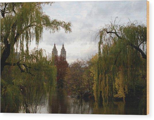 Central Park Autumn Wood Print