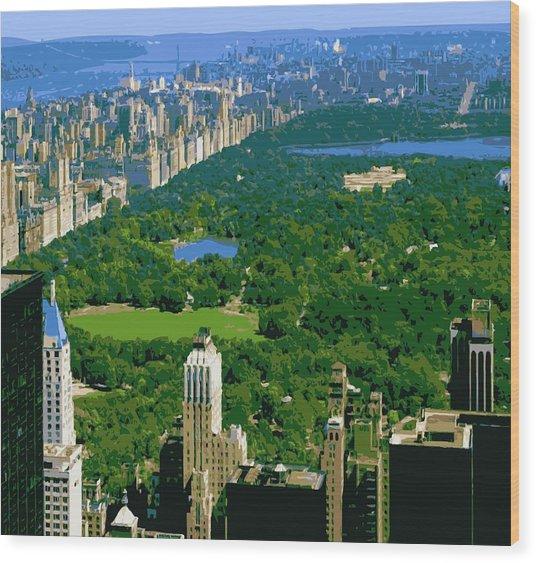 Central Park Color 16 Wood Print