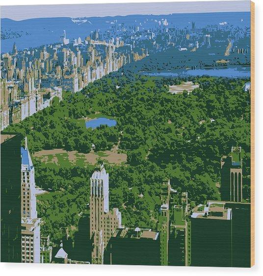 Central Park Color 6 Wood Print