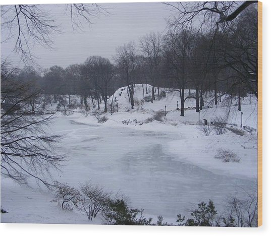 Central Park In The Snow Wood Print by Clare Staplehurst