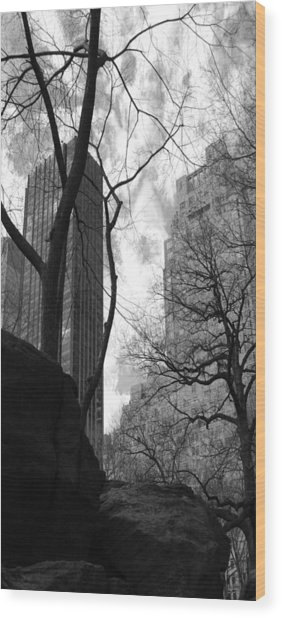 Central Park One Wood Print